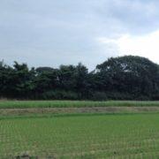 今日の田井村