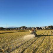 つじ農園の米づくり~土づくり