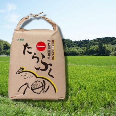 玄米と農園
