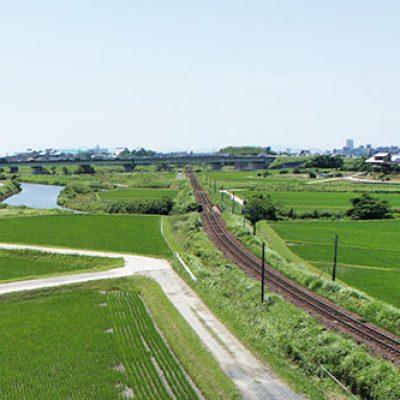 農園風景線路